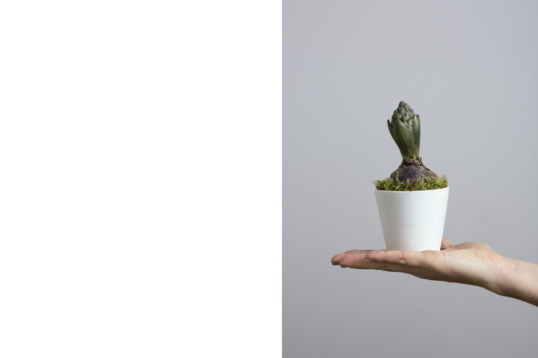 a white mini ceramic vase held in hand by the craftsman - handmade - Federica Ramacciotti